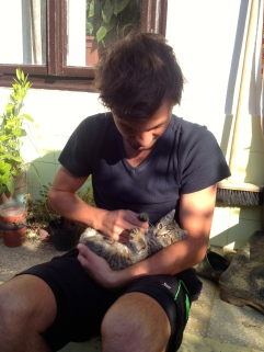 One of the kittens we had to be careful not to lose when staying in the empty house of a family on holiday.